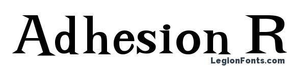 Adhesion Regular DB Font