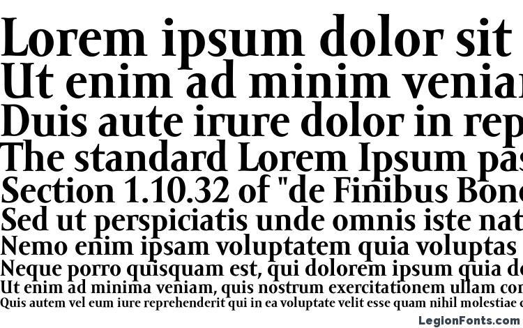 образцы шрифта Amor Serif Text Pro Bold, образец шрифта Amor Serif Text Pro Bold, пример написания шрифта Amor Serif Text Pro Bold, просмотр шрифта Amor Serif Text Pro Bold, предосмотр шрифта Amor Serif Text Pro Bold, шрифт Amor Serif Text Pro Bold