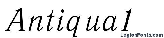 Шрифт Antiqua1
