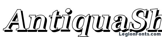 AntiquaSh Cd Medium Italic Font