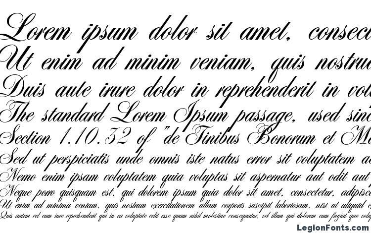 образцы шрифта Antonella script, образец шрифта Antonella script, пример написания шрифта Antonella script, просмотр шрифта Antonella script, предосмотр шрифта Antonella script, шрифт Antonella script