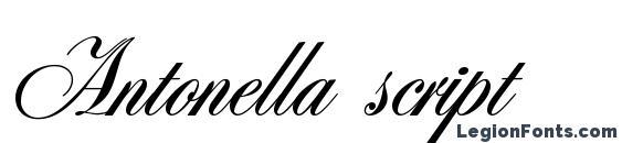 Шрифт Antonella script