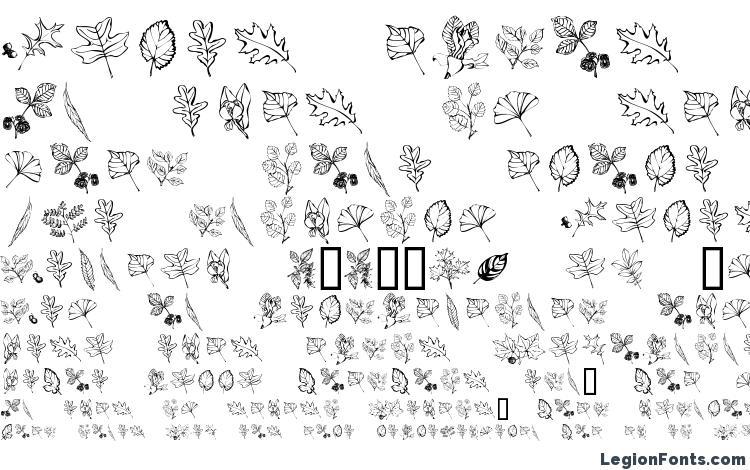 specimens ArborisFolium font, sample ArborisFolium font, an example of writing ArborisFolium font, review ArborisFolium font, preview ArborisFolium font, ArborisFolium font
