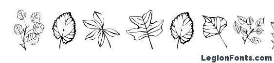 ArborisFolium Font