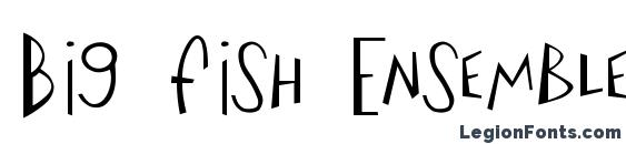 Big Fish Ensemble Font