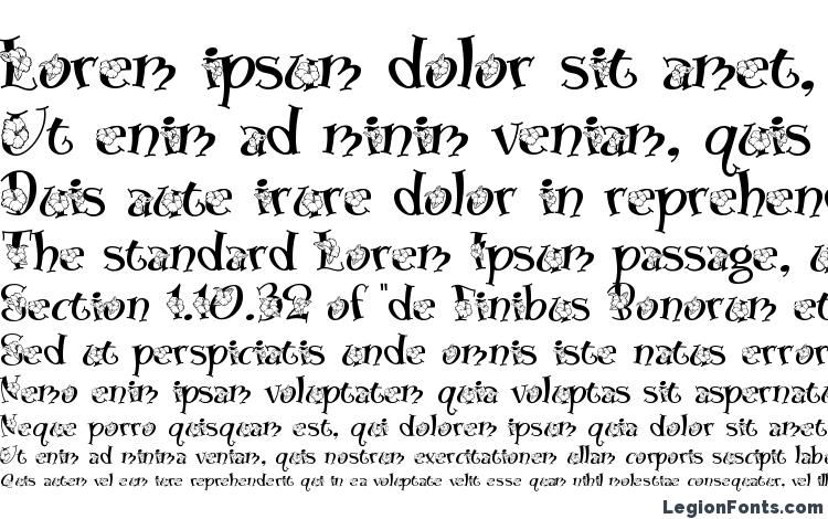 specimens Blossom font, sample Blossom font, an example of writing Blossom font, review Blossom font, preview Blossom font, Blossom font
