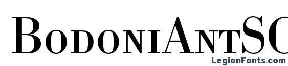 BodoniAntSCTReg Font