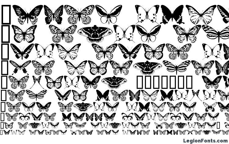 образцы шрифта butterflips, образец шрифта butterflips, пример написания шрифта butterflips, просмотр шрифта butterflips, предосмотр шрифта butterflips, шрифт butterflips