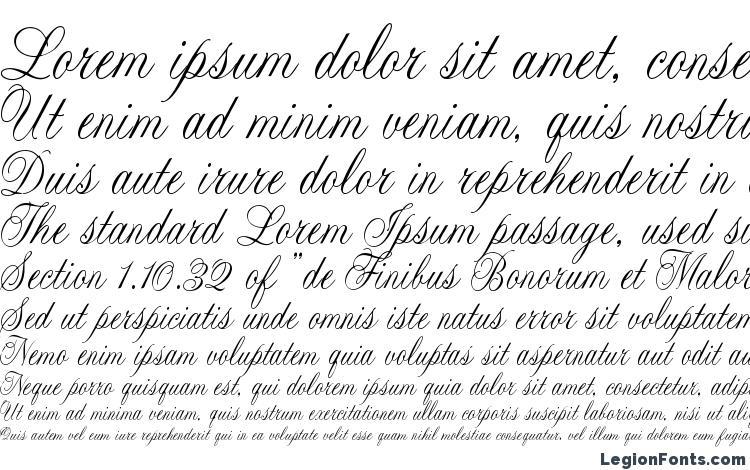 образцы шрифта Cac lasko condensed, образец шрифта Cac lasko condensed, пример написания шрифта Cac lasko condensed, просмотр шрифта Cac lasko condensed, предосмотр шрифта Cac lasko condensed, шрифт Cac lasko condensed