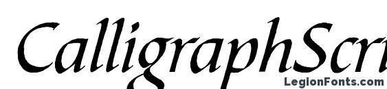 шрифт CalligraphScript Regular, бесплатный шрифт CalligraphScript Regular, предварительный просмотр шрифта CalligraphScript Regular