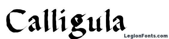 шрифт Calligula, бесплатный шрифт Calligula, предварительный просмотр шрифта Calligula