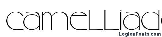 Шрифт CamelliaDEE