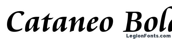 Шрифт Cataneo Bold BT