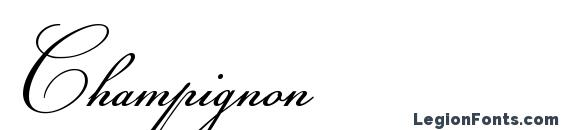 Champignon Font, Cursive Fonts