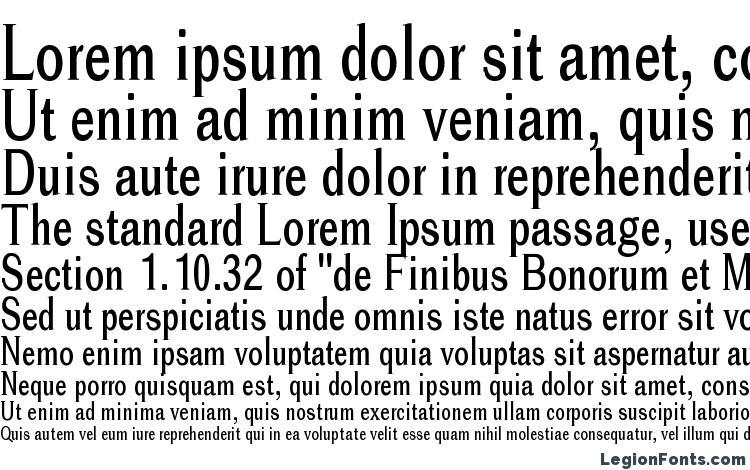 specimens Cheetah font, sample Cheetah font, an example of writing Cheetah font, review Cheetah font, preview Cheetah font, Cheetah font