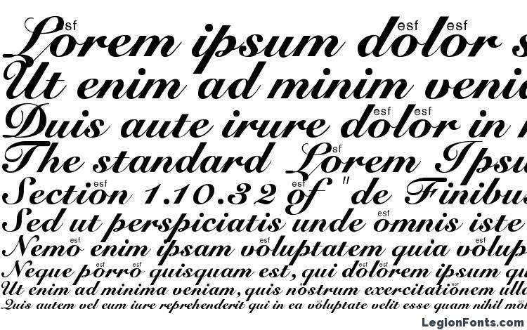 Specimens Cursive Elegant Font Sample An Example Of Writing