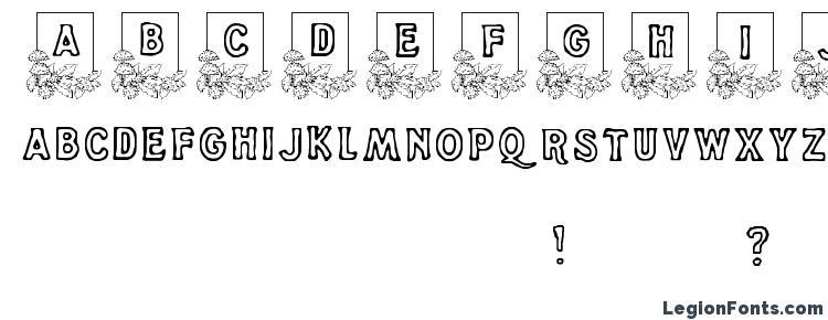 глифы шрифта Dandelion, символы шрифта Dandelion, символьная карта шрифта Dandelion, предварительный просмотр шрифта Dandelion, алфавит шрифта Dandelion, шрифт Dandelion