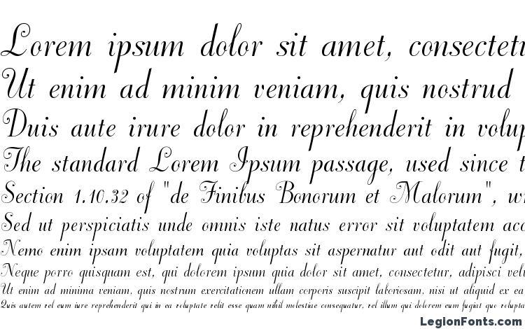 образцы шрифта DorchesterScriptMTStd, образец шрифта DorchesterScriptMTStd, пример написания шрифта DorchesterScriptMTStd, просмотр шрифта DorchesterScriptMTStd, предосмотр шрифта DorchesterScriptMTStd, шрифт DorchesterScriptMTStd