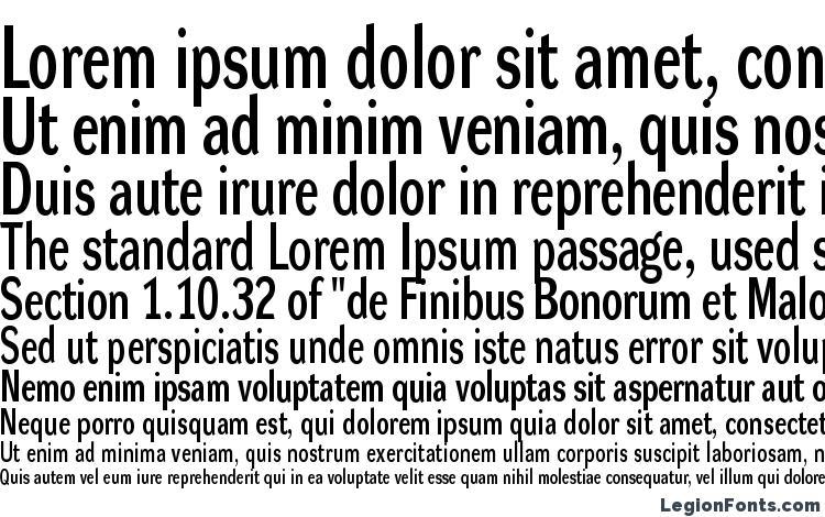 specimens DynaGroteskLC Bold font, sample DynaGroteskLC Bold font, an example of writing DynaGroteskLC Bold font, review DynaGroteskLC Bold font, preview DynaGroteskLC Bold font, DynaGroteskLC Bold font