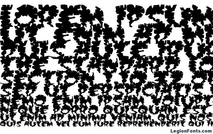 specimens Extra virgin font, sample Extra virgin font, an example of writing Extra virgin font, review Extra virgin font, preview Extra virgin font, Extra virgin font