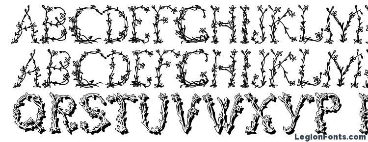 глифы шрифта FloralTwo, символы шрифта FloralTwo, символьная карта шрифта FloralTwo, предварительный просмотр шрифта FloralTwo, алфавит шрифта FloralTwo, шрифт FloralTwo