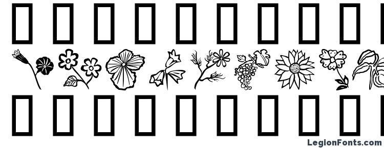 глифы шрифта Flower Show, символы шрифта Flower Show, символьная карта шрифта Flower Show, предварительный просмотр шрифта Flower Show, алфавит шрифта Flower Show, шрифт Flower Show