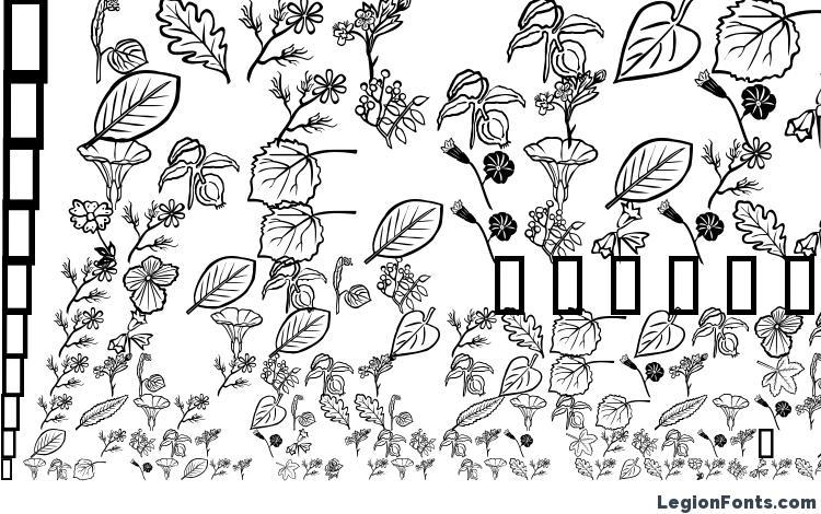 образцы шрифта Flower Show, образец шрифта Flower Show, пример написания шрифта Flower Show, просмотр шрифта Flower Show, предосмотр шрифта Flower Show, шрифт Flower Show