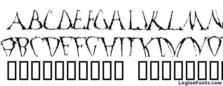 глифы шрифта Funko Occelatus, символы шрифта Funko Occelatus, символьная карта шрифта Funko Occelatus, предварительный просмотр шрифта Funko Occelatus, алфавит шрифта Funko Occelatus, шрифт Funko Occelatus