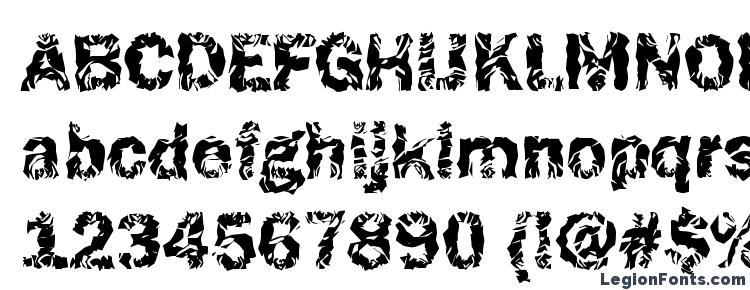 glyphs Funky37 Bold font, сharacters Funky37 Bold font, symbols Funky37 Bold font, character map Funky37 Bold font, preview Funky37 Bold font, abc Funky37 Bold font, Funky37 Bold font
