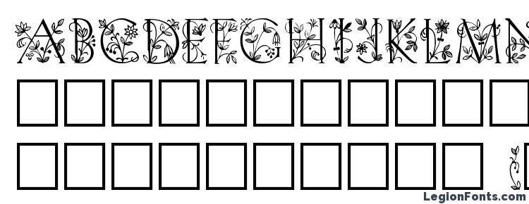 глифы шрифта Gabel floribundi, символы шрифта Gabel floribundi, символьная карта шрифта Gabel floribundi, предварительный просмотр шрифта Gabel floribundi, алфавит шрифта Gabel floribundi, шрифт Gabel floribundi