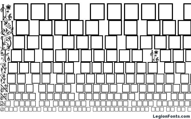 образцы шрифта Gabel floribundi, образец шрифта Gabel floribundi, пример написания шрифта Gabel floribundi, просмотр шрифта Gabel floribundi, предосмотр шрифта Gabel floribundi, шрифт Gabel floribundi