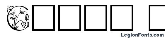 Gabel floribundi font, free Gabel floribundi font, preview Gabel floribundi font