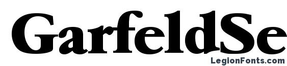 Шрифт GarfeldSerial Heavy Bold