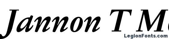 Jannon T Moderne OT Bold Italic Font