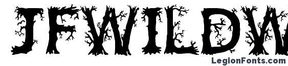 JFWildWood Font, Lettering Fonts