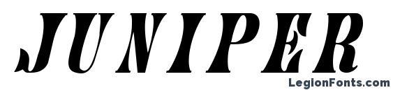 Juniper ItalicA Font