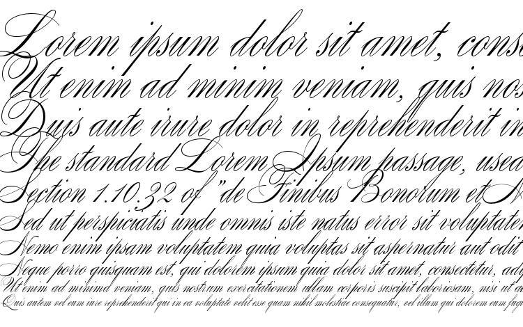 образцы шрифта Splendid Script, образец шрифта Splendid Script, пример написания шрифта Splendid Script, просмотр шрифта Splendid Script, предосмотр шрифта Splendid Script, шрифт Splendid Script