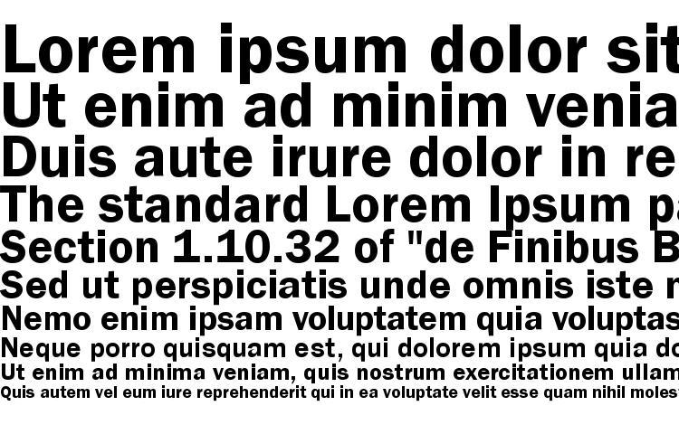 образцы шрифта ST Gothic Bold, образец шрифта ST Gothic Bold, пример написания шрифта ST Gothic Bold, просмотр шрифта ST Gothic Bold, предосмотр шрифта ST Gothic Bold, шрифт ST Gothic Bold
