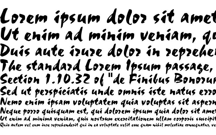 specimens Staccato 555 BT font, sample Staccato 555 BT font, an example of writing Staccato 555 BT font, review Staccato 555 BT font, preview Staccato 555 BT font, Staccato 555 BT font