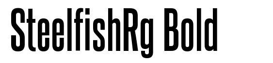 SteelfishRg Bold Font