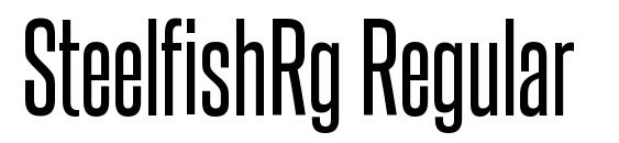 SteelfishRg Regular Font