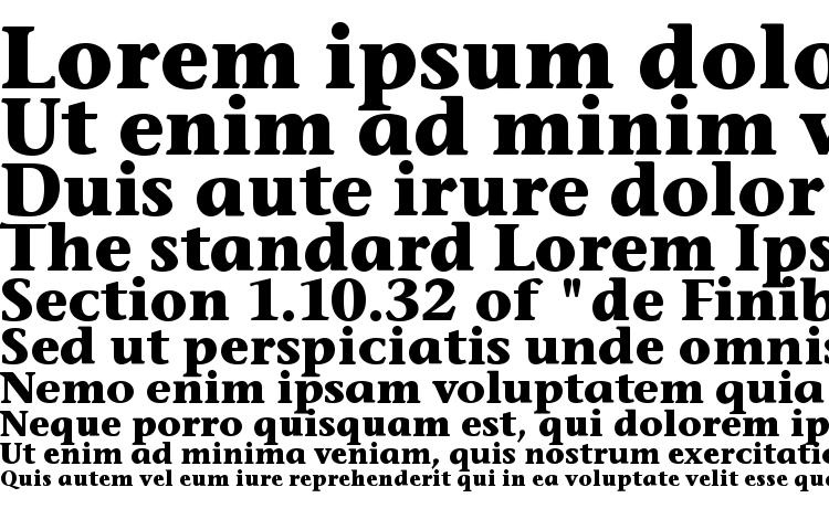 specimens Stone Inf ITC Bold font, sample Stone Inf ITC Bold font, an example of writing Stone Inf ITC Bold font, review Stone Inf ITC Bold font, preview Stone Inf ITC Bold font, Stone Inf ITC Bold font