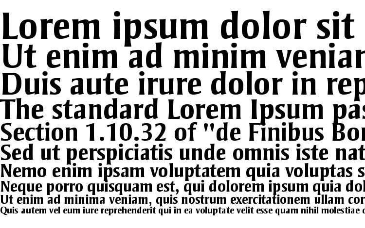 образцы шрифта Strayhorn MT Bold, образец шрифта Strayhorn MT Bold, пример написания шрифта Strayhorn MT Bold, просмотр шрифта Strayhorn MT Bold, предосмотр шрифта Strayhorn MT Bold, шрифт Strayhorn MT Bold