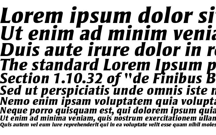 образцы шрифта Strayhorn MT Extra Bold Italic, образец шрифта Strayhorn MT Extra Bold Italic, пример написания шрифта Strayhorn MT Extra Bold Italic, просмотр шрифта Strayhorn MT Extra Bold Italic, предосмотр шрифта Strayhorn MT Extra Bold Italic, шрифт Strayhorn MT Extra Bold Italic