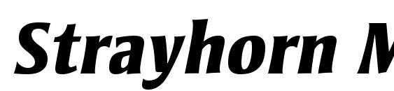 шрифт Strayhorn MT Extra Bold Italic, бесплатный шрифт Strayhorn MT Extra Bold Italic, предварительный просмотр шрифта Strayhorn MT Extra Bold Italic
