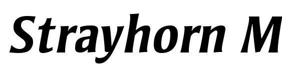 Шрифт Strayhorn MT OsF Bold Italic