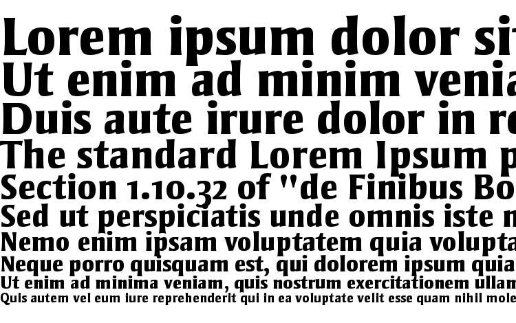 specimens Strayhorn MT OsF Extra Bold font, sample Strayhorn MT OsF Extra Bold font, an example of writing Strayhorn MT OsF Extra Bold font, review Strayhorn MT OsF Extra Bold font, preview Strayhorn MT OsF Extra Bold font, Strayhorn MT OsF Extra Bold font