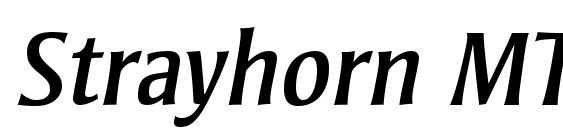 Strayhorn MT OsF Italic font, free Strayhorn MT OsF Italic font, preview Strayhorn MT OsF Italic font