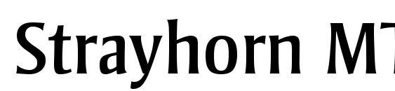 Strayhorn MT Font
