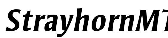 StrayhornMTStd BoldItalic Font